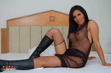 sexy ladyboy in black fishnet outfit